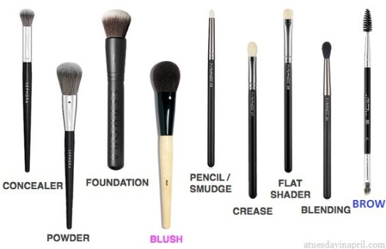 my-must-have-makeup-brushes